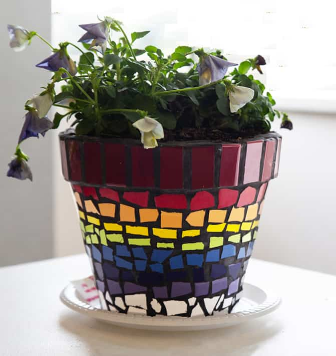 "Erica Learmonth  ""Rainbow Pot Plant"""